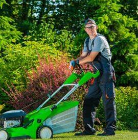 Regular Grass Cutting
