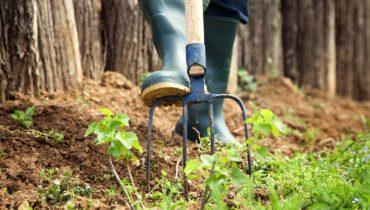 Turfing & Seeding